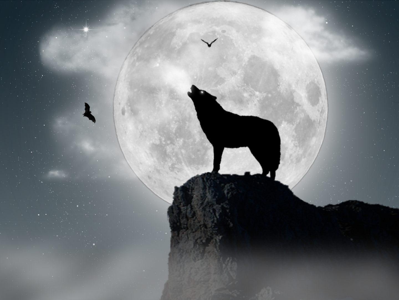 El libro de los secretos capítulo 1: Lobo de luna llena