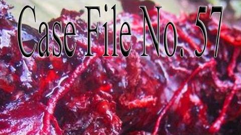 """""""Case File No. 57"""" by Fear of"""