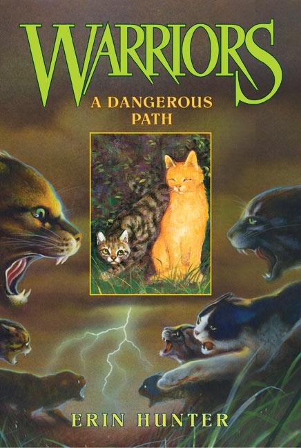 A Dangerous Path.png