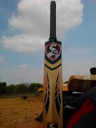 450px-A modern Cricket bat (back view)