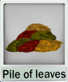Pile of leaves.png