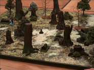 Labenda Swamp2