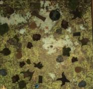 Labenda Swamp3