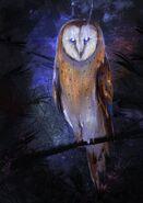 BlackSalander-Frumpkin-Owl