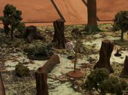 Labenda Swamp1