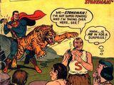 Action Comics Vol 1 201