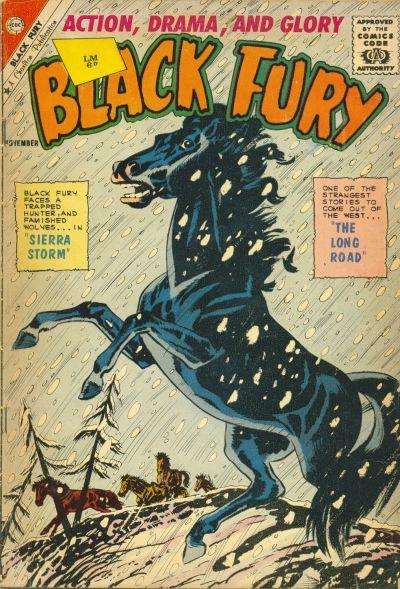 Black Fury Vol 1 33