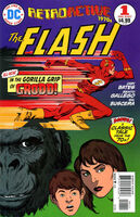 DC Retroactive Flash The 70s Vol 1 1