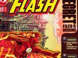 Flash Secret Files and Origins Vol 1 3