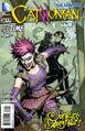 Catwoman Vol 4 24