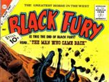 Black Fury Vol 1 30