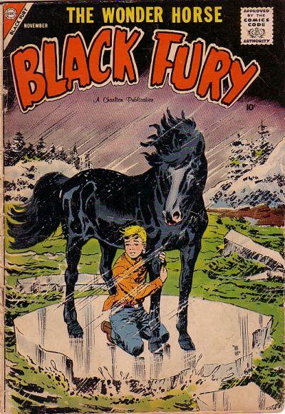 Black Fury Vol 1 16
