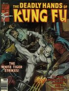 Deadly Hands of Kung Fu 27
