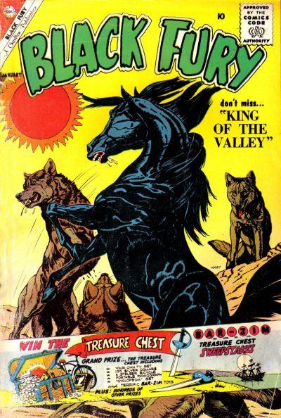 Black Fury Vol 1 28