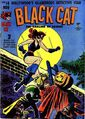 Black Cat Comics Vol 1 14