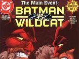 Batman and Wildcat Vol 1 3