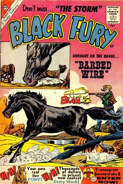 Black Fury Vol 1 25