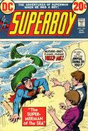 Superboy Vol 1 194
