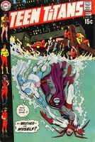 Teen Titans Vol 1 29
