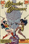 Wonder Woman Vol 1 206