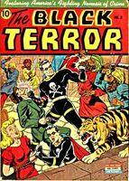 Black Terror Vol 1 2