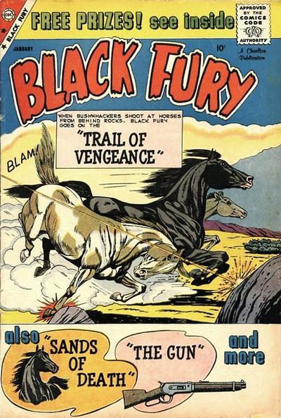 Black Fury Vol 1 22