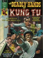 Deadly Hands of Kung Fu Vol 1 3