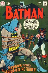 Batman Vol 1 210