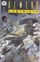 Aliens Labyrinth Vol 1 2