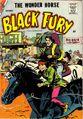 Black Fury Vol 1 15
