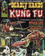 Deadly Hands of Kung Fu Vol 1 1