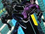 Catwoman/Wildcat Vol 1 1