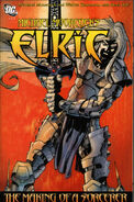 Michael Moorcock's Elric The Making of a Sorcerer Vol 1 4