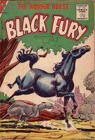 Black Fury Vol 1 6