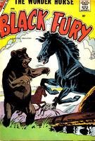 Black Fury Vol 1 13