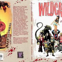 WildC.A.T.s Street Smart Vol 1 1.jpg