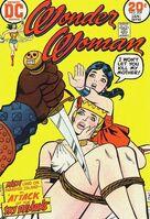 Wonder Woman Vol 1 209