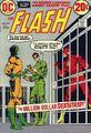 Flash Vol 1 219