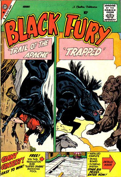 Black Fury Vol 1 20