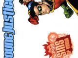 Young Justice: Sins of Youth Vol 1 2
