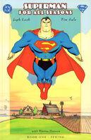Superman for All Seasons Vol 1 1