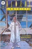 Aliens Labyrinth Vol 1 1