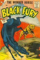 Black Fury Vol 1 36