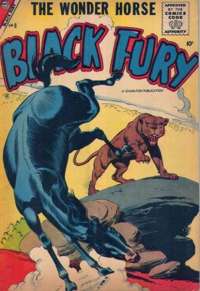 Black Fury Vol 1 8