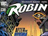 Robin Vol 4 144