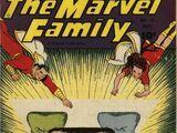 Marvel Family Vol 1 15