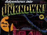 Adventures into the Unknown Vol 1
