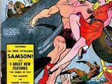 Fantastic Comics Vol 1 23