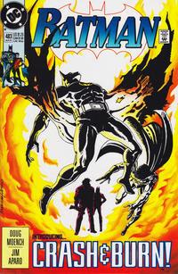 Batman Vol 1 483.jpg
