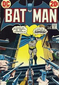Batman Vol 1 249